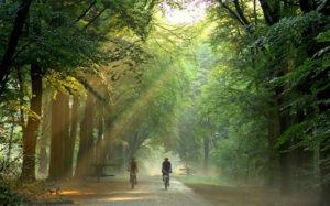 fietsen en overnachten drenthe